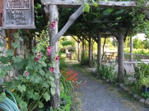 lopez-island-vineyards